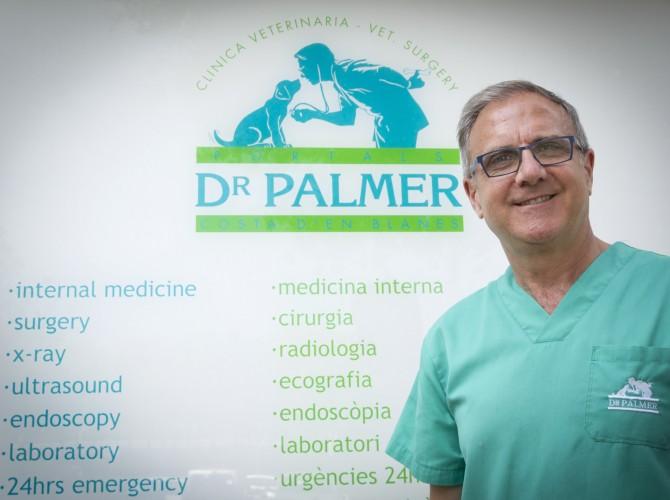 Doctor Palmer
