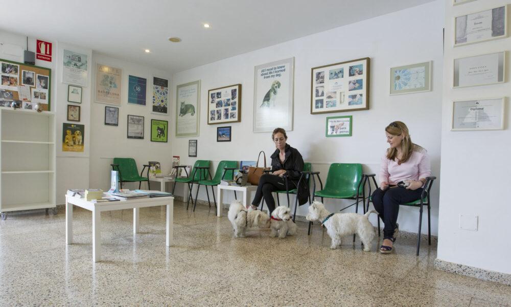 Sala espera consulta