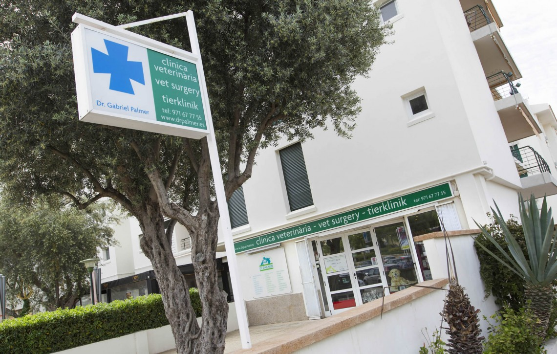 Clinica-veterinario-Palmer-entrada1